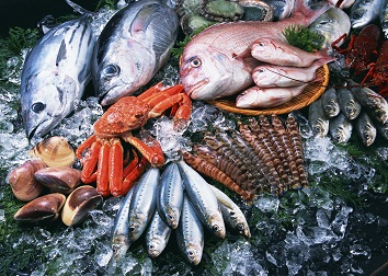 seafood-array-354×252
